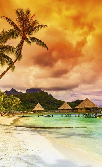 Polynesia MS-2-0211 150×250