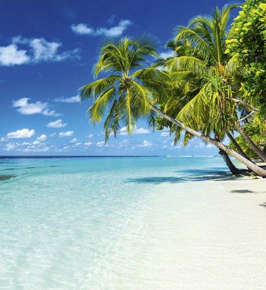 Paradise Beach MS-3-0215