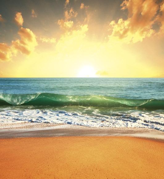 Sea sunsetMS-3-0209