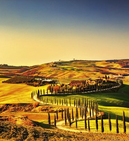 TuscanyMS-3-0070