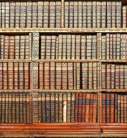 libraryMS-3-0263