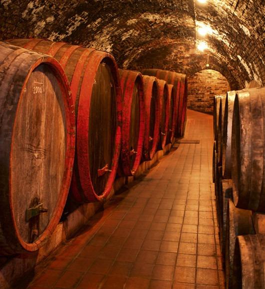 wine barrelsMS-3-0247