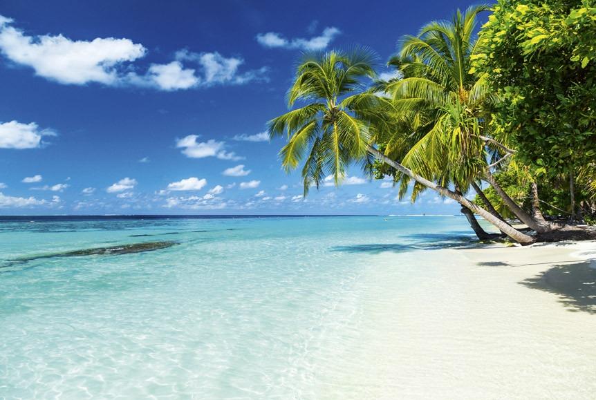 paradise beachMS-5-0215